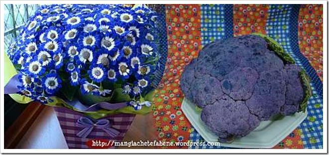 Flores para alegrar seu dia!blog